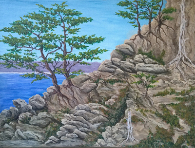 Stony Cliff by Richard Williams