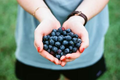 blueberries provide fiber for fat burning