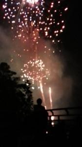 Cary's Fourth of July Celebration at Koka Booth