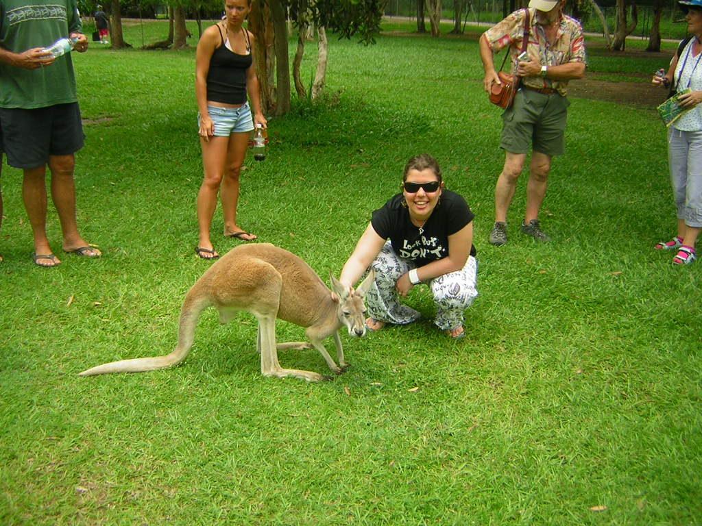 30 coisas antes dos 30 - Fazendo carinho no Canguru na Austália