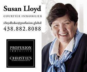 Susan-Lloyd-BigBox.jpg