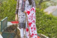 Formal Embroidered Mina Hassan Collection 2016