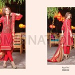 Embrodiered shalwar kameez dress