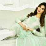 Dreamy Desires Eid Luxury Dresses By Zarqash 2016 11