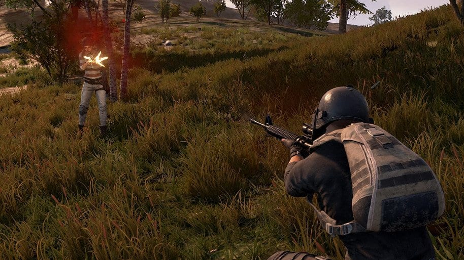 PUBG streamer banned for team killing