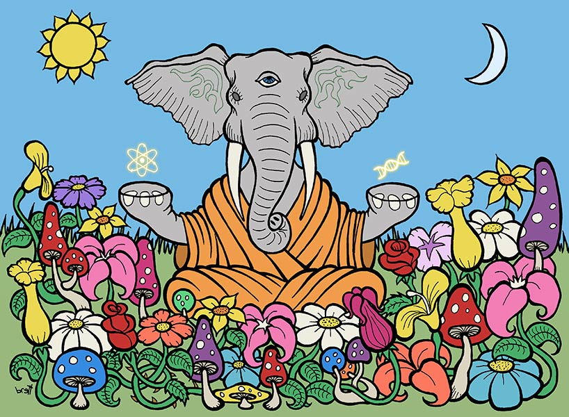 "ART TODAY 040318 Brett Gilbert's ""Third Eye Elephant"" illustrates mastery, and a deep understanding of enlightenment through humor… Ommmm"
