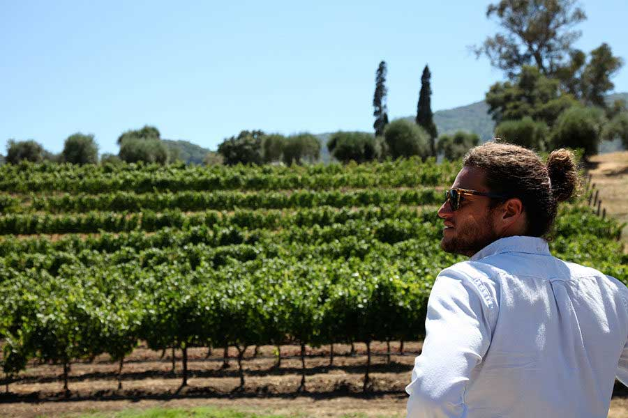Seth Cripe at LOLA Vinyards