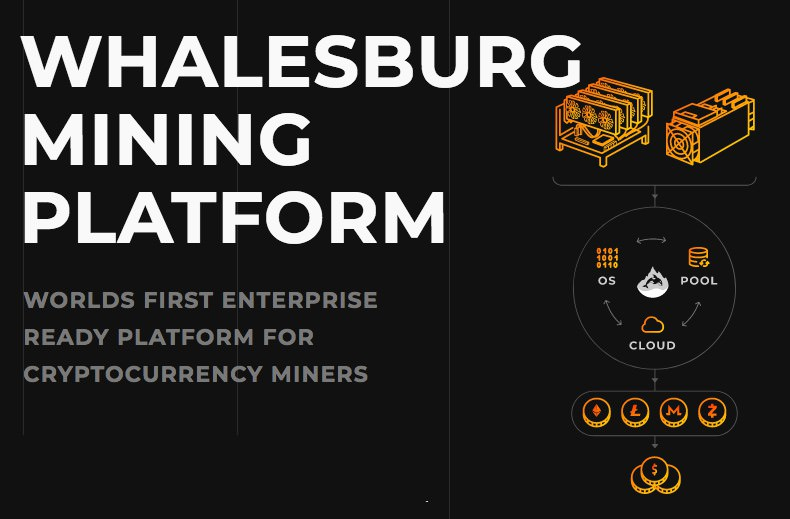 whalesburg ico