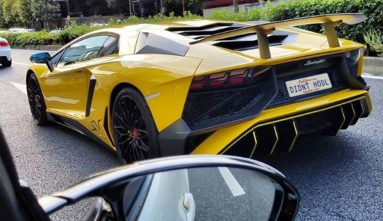 Cool license @Crypto Lambo