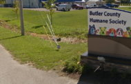 Butler County Humane Society Reopens
