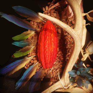 Fall Equinox Cacao Ceremony
