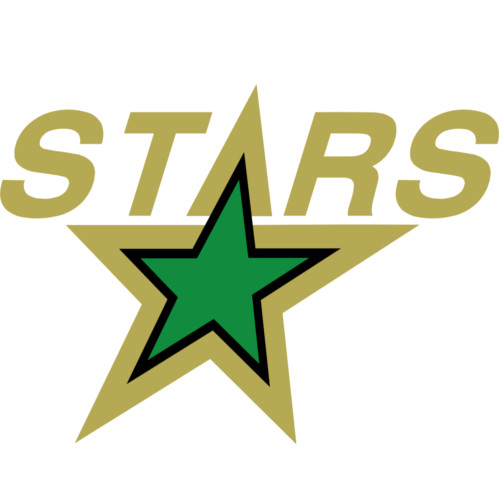 Minnesota North Stars Logo 1991-1993