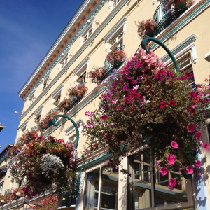 if you are afraid of the flower pot falling on your head, around this pub/restaurant, the chances are definitely higher ;)