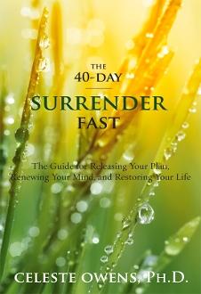 nov surrender book