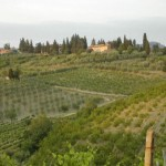 De wijnroute Strada del Vino Chianti Montespertoli