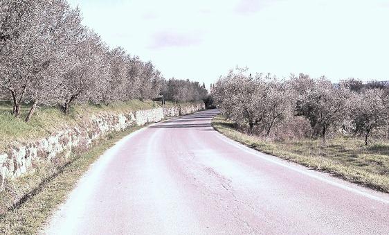 Strada Pronciale Sette Ponte 85