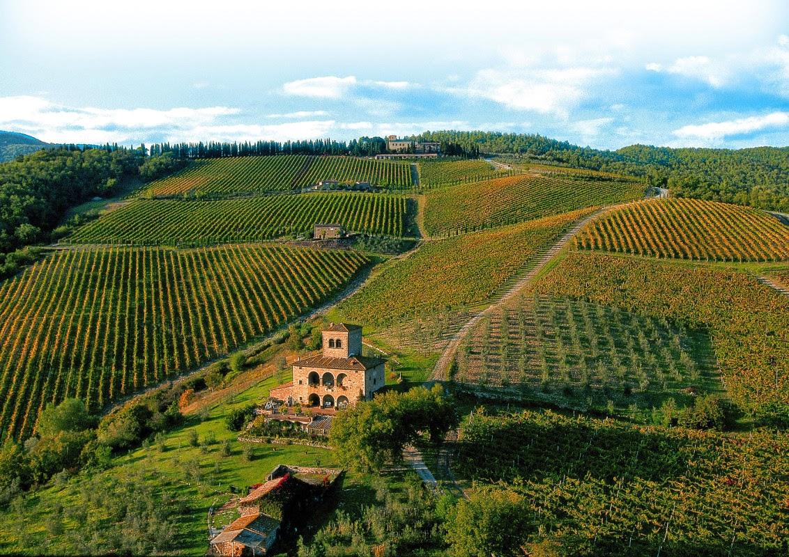 Chianti Classico wijngaarden - foto Castello d'Albola
