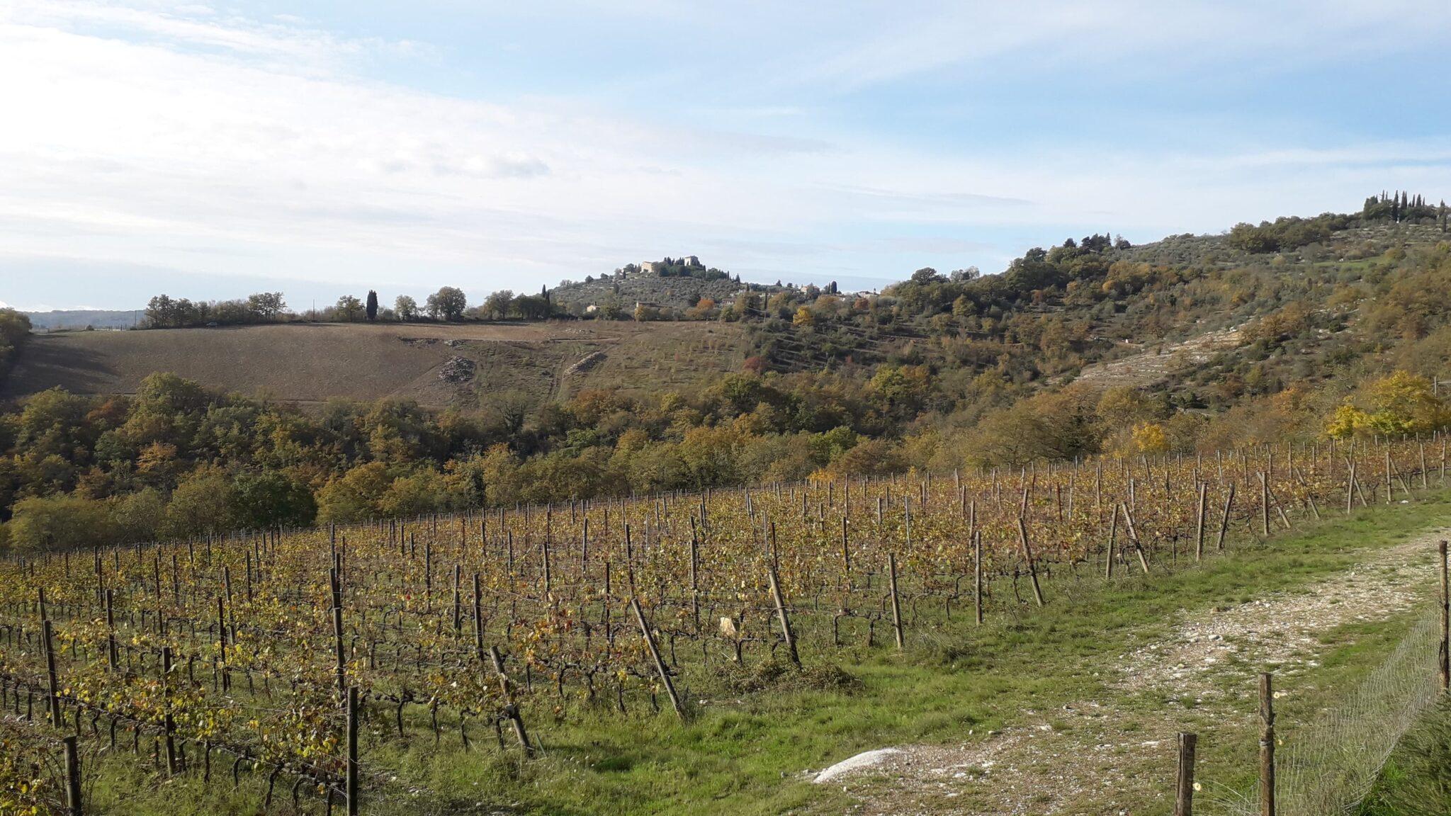 Vakantie in Toscane - Chianti streek herfst