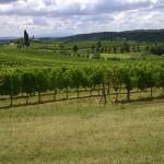 De Chianti streek ontdekken