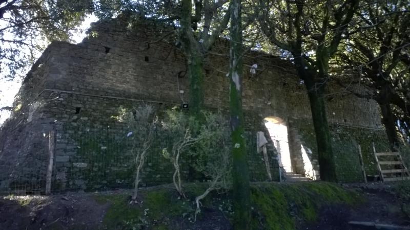 de overgebleven vestingsmuren van het kasteel
