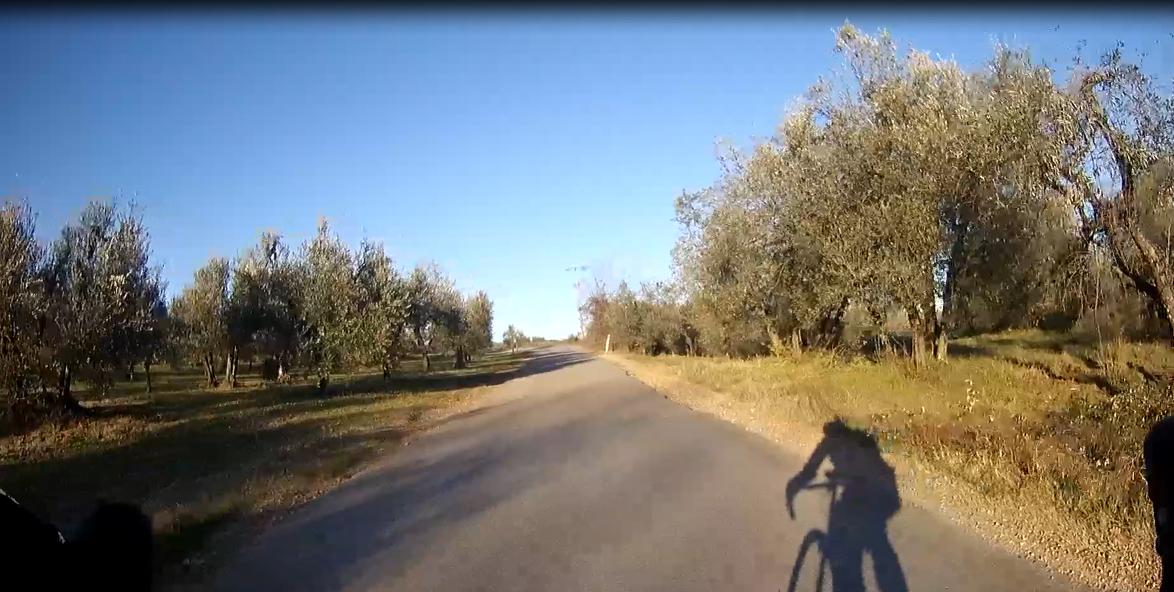 fietsen in de Chianti streek
