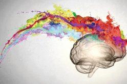 Mental health on the brain: Recent mental health reform brings more awareness