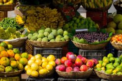 Healthy Foods for the Holiday Season