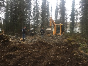 Landscaping land clearing