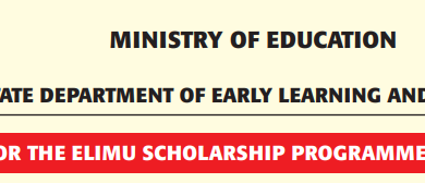 Photo of Elimu Scholarships Open For KCPE 2019 Pupils Who Scored Over 280 Marks