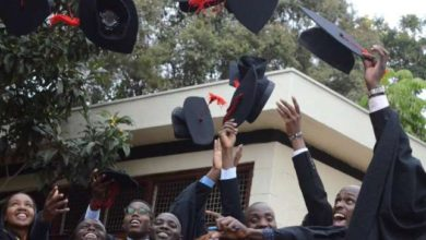 Photo of 100 Scholarships Advertised On Ministry Of Education For Kenyan Students