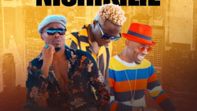 Photo of Watch Willy Paul's New Song 'Nishikilie' Ft Ommy Dimpoz and Ali Kiba