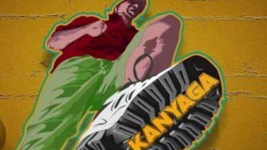 Photo of Kanyaga Lyrics By Diamond Platnumz