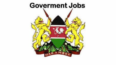 Photo of List – Government Institutions And Ministries With Open Vacancies