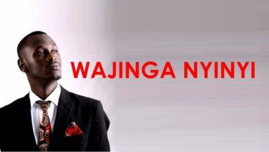 Photo of Lyrics -Wajinga Nyinyi