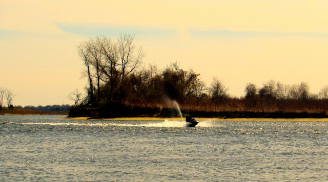 A Rumson Focus from the Shrewsbury River