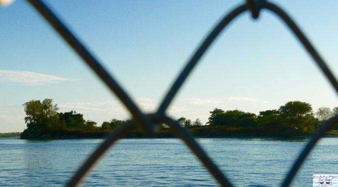 Focus: A Special Rumson Island