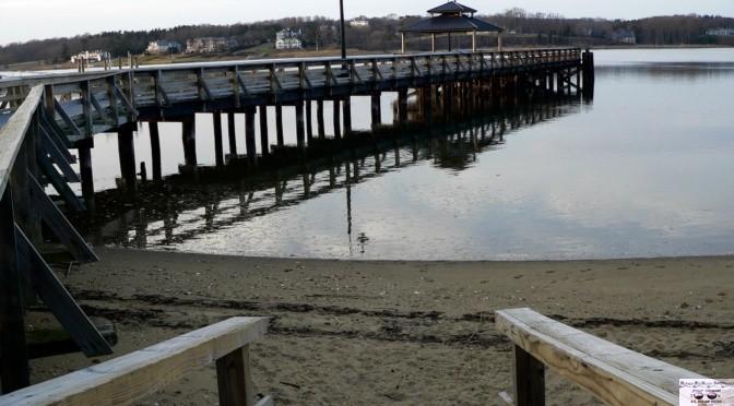 Focus: River Reflection