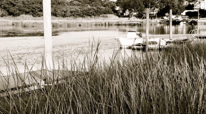 In Memorium: Rumson Resident Nancy Fell-Hill, 59