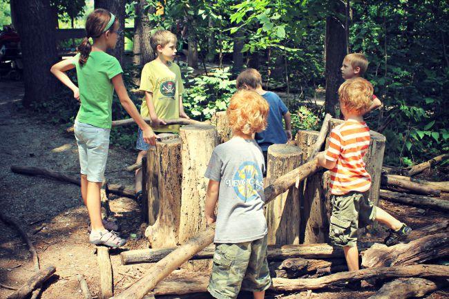 Cincinnati Nature Center Woods