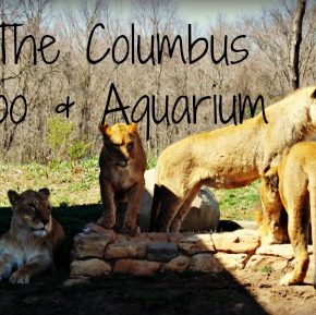 Columbus Zoo & Aquarium