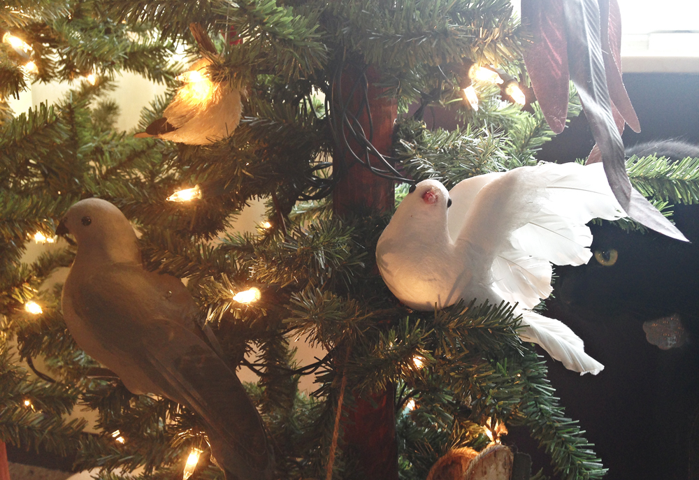 Doves on Christmas trees