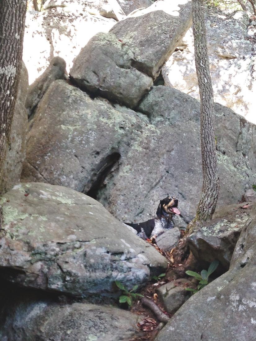 Major goes bouldering