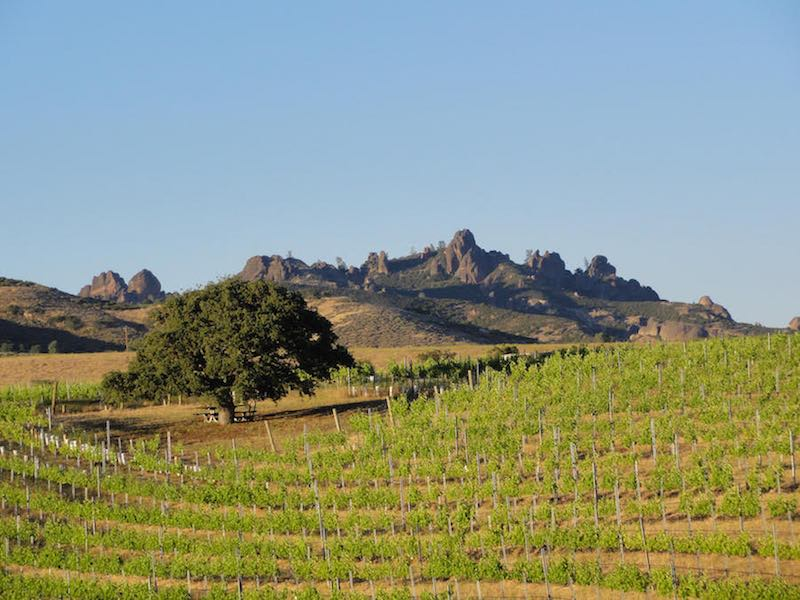 Pictures of The Inn at The Pinnacles Scenic Vineyard