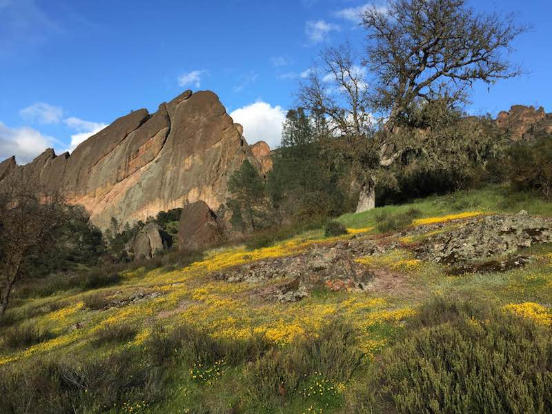 Pictures of The Inn at The Pinnacles Scenic View