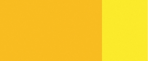 polyazo_yellow-300x125-1.jpg