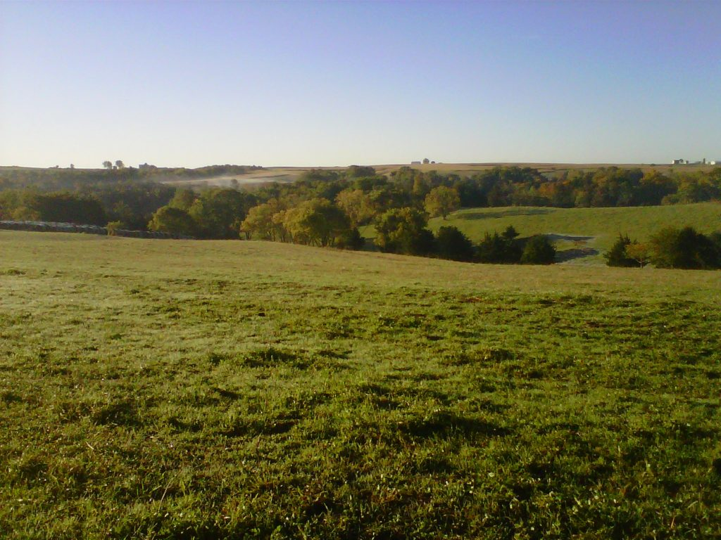 Beautiful rolling pasture
