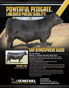 SAV Atmosphere 6600 Ad