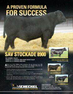 SAV Stockade 8900
