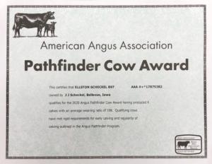 Pathfinder Cow Award