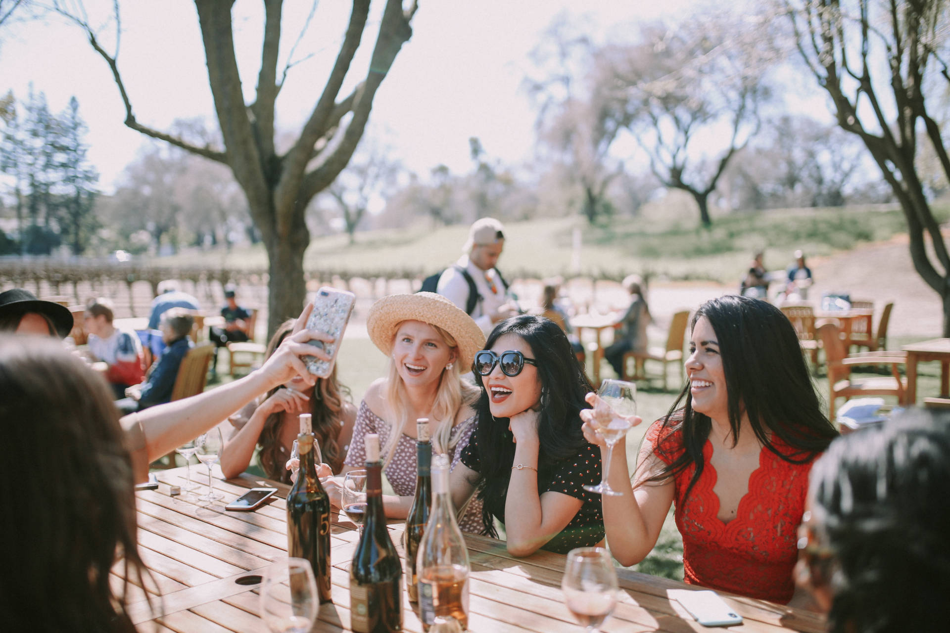 Ruthie Ridley Blog- Girls Day At Bogle Winery